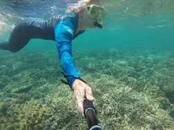 Follow me to the Great Barrier Reef!