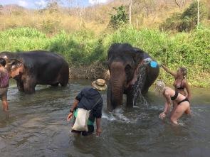 Vivi and I bathing Maemoon and Kamjan!