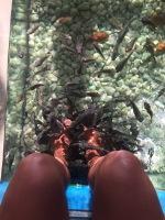My first fish bath!