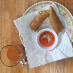Perfect Veggie Spring Rolls and so easy to make!